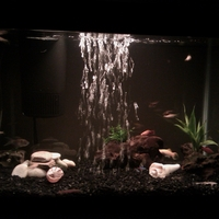 Our Aquarium